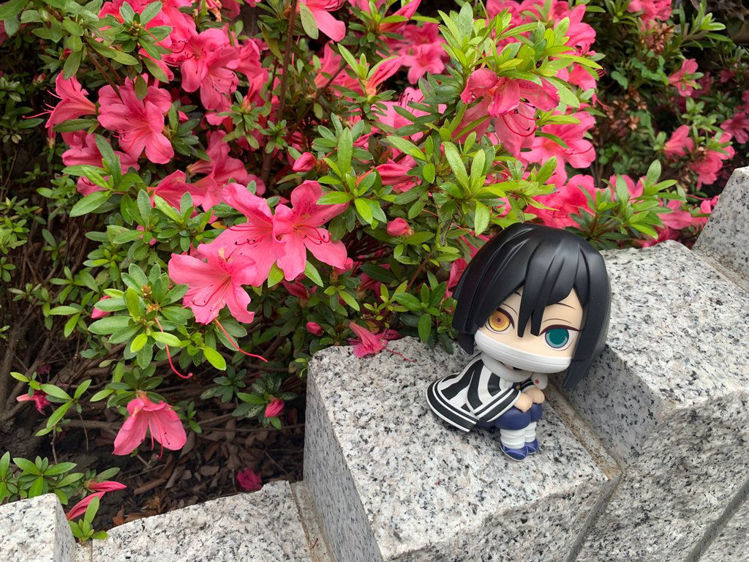Demon Slayer - LOOK UP Iguro Obanai